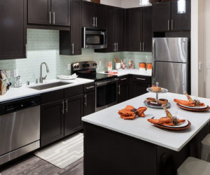 New-Batch-Gallery-Images_0013_kitchen-2